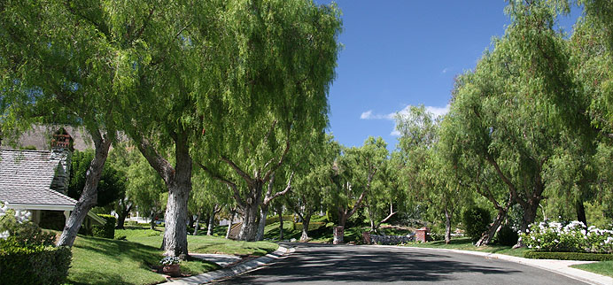 Guard-gated homes in the Hunt Club neighborhood in San Juan Capistrano, CA